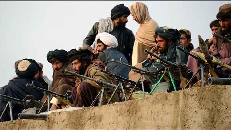 अफगानिस्तान में आतंक की खेती